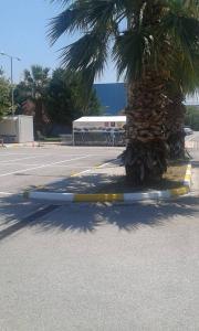 parking 06