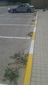parking 08