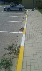 parking 04